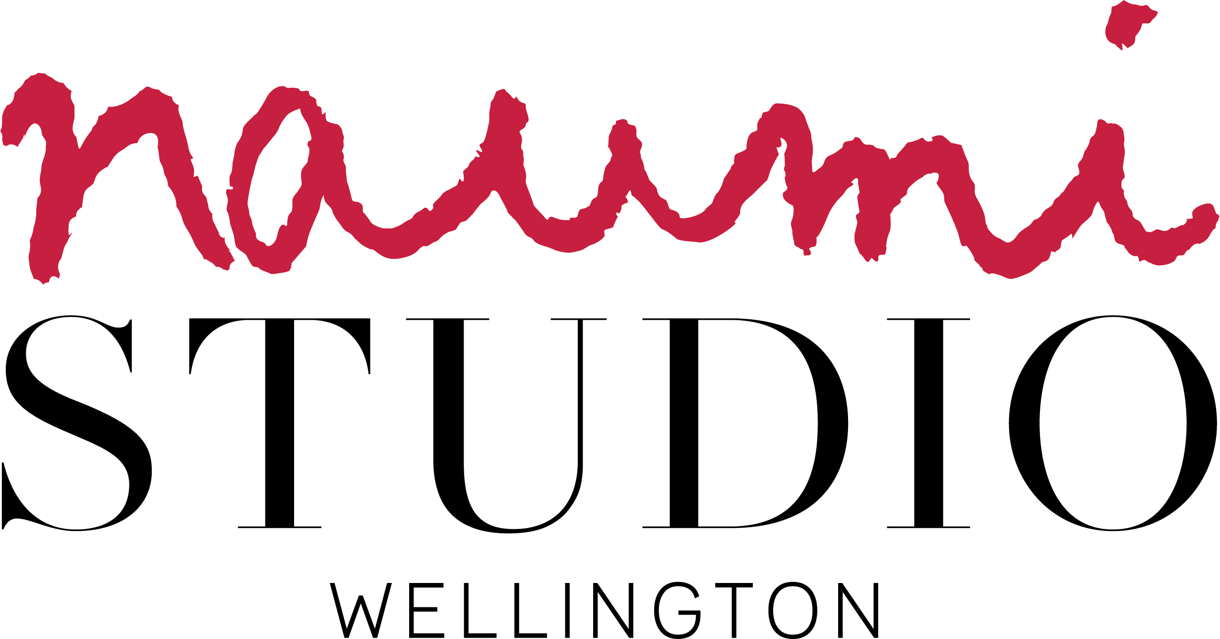 Naumi Studio Hotel Wellington